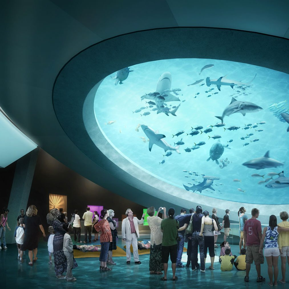 Aquarium-Mezzanine-